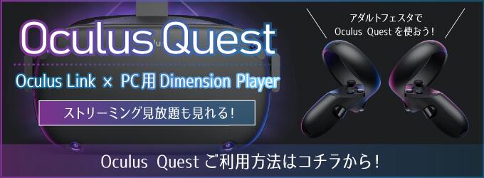 OculusQuestについての説明画像